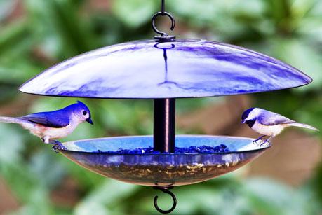 Dome Bird Feeders