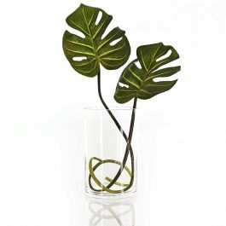 "7"" Medium Cylinder Glass Vase"