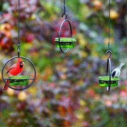 Mosaic Birds Hummble Basic Bird Feeder Lime
