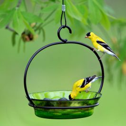 Mosaic Birds Cuban Hanging Bird Bath or Feeder Lime