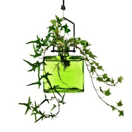 Hanging Matic Recycled Glass Rooting Vase - Clear