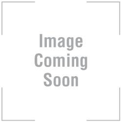 Casablanca Recycled Glass Vase & Metal Stand - Orange